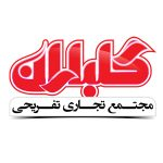9 copy_0000_لوگو گلباران